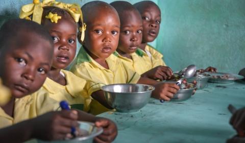 2019년 세계 식량의 날